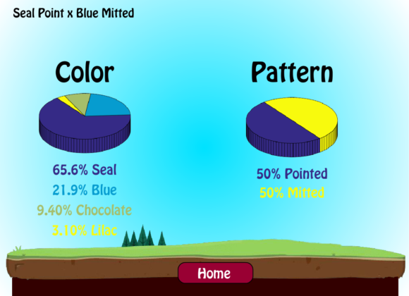 New Color/Pattern Predictor!